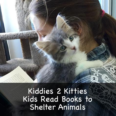 Kiddies 2 Kitties