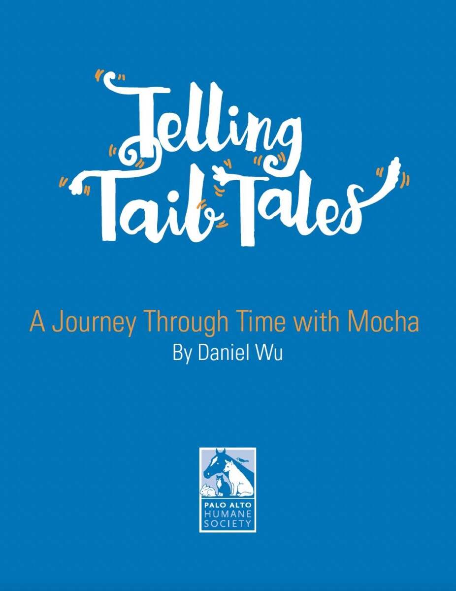 A Journey Through Time with Mocha